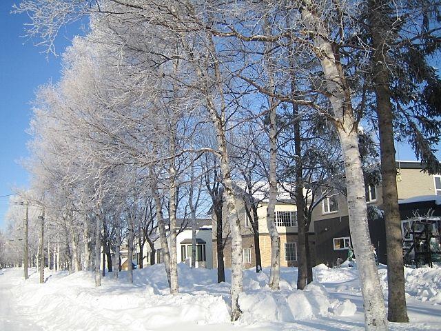 北海道、冬の間の不動産売買取引は…