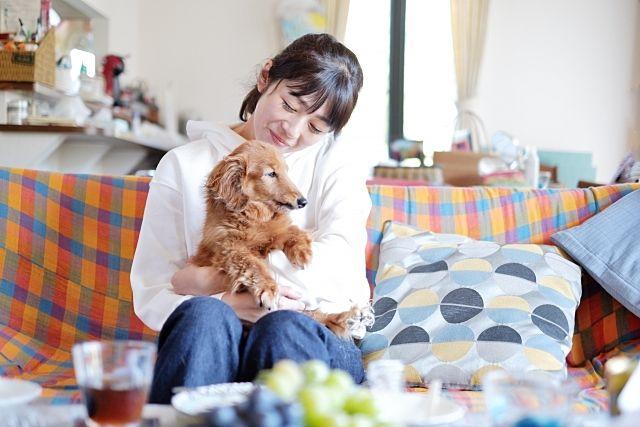 最近は「多頭飼育」が増え、ペット相談可アパートとはいえお断りすることも多いです。
