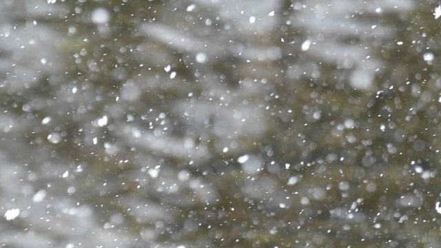 吹雪がきました