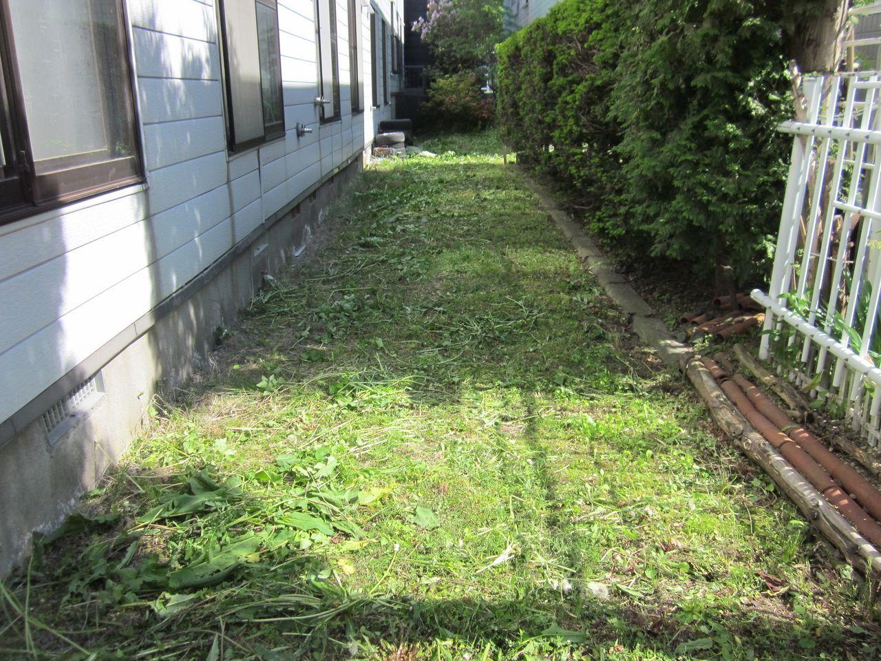 アパート等の草刈りを実施しています。草が伸びるのは早いですね…